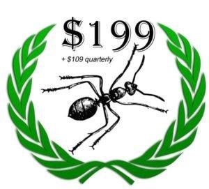 pest control offer